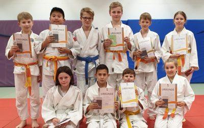 Judo Kyu-Prüfung am 17.12.2019